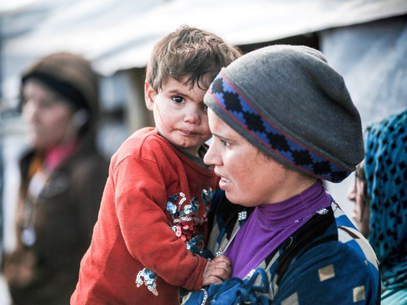 """""""Como Jesucristo, obligados a huir"""" tema de la Jornada Mundial del Migrante y del Refugiado 2020"""