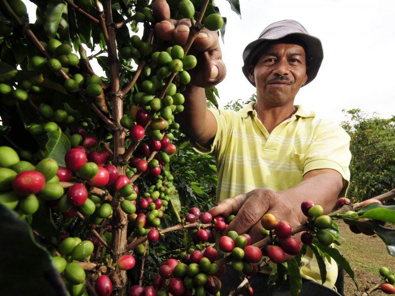 Boletín post-COVID: El futuro del trabajo migrante