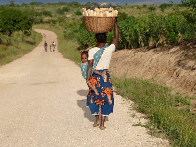 Bulletin post-COVID: La migration et une économie inclusive
