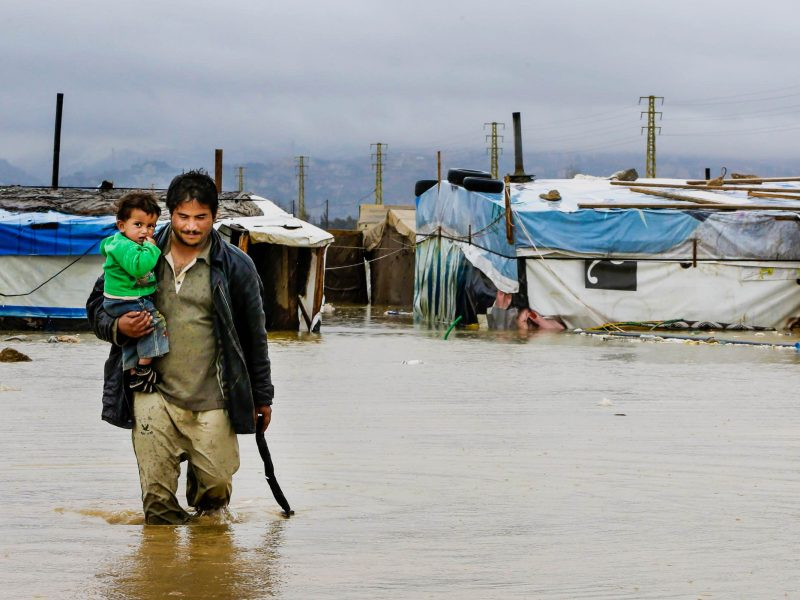Post-COVID bulletin: Crises in nature and displacement